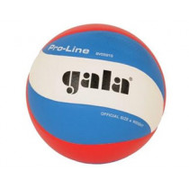 Gala Pro-Line Volleyball 5591S10 dimple